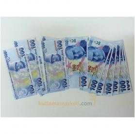 Geçersiz 100 Adet 100 Lira