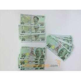 Geçersiz 100 Adet 20 Lira